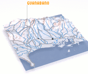 3d view of Guanábano