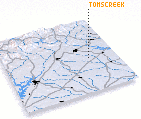3d view of Toms Creek