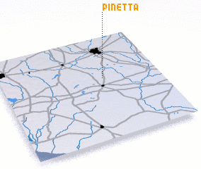 3d view of Pinetta