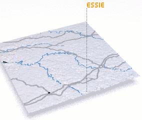 3d view of Essie