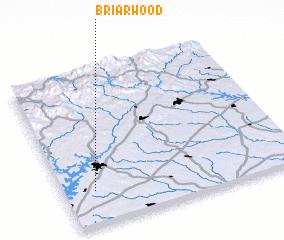 3d view of Briarwood