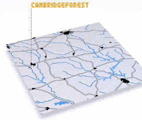 3d view of Cambridge Forest