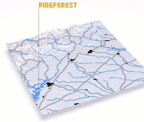 3d view of Pine Forest