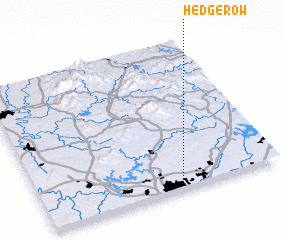 3d view of Hedgerow