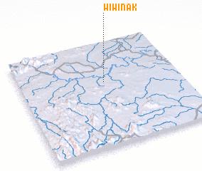 3d view of Wiwinak