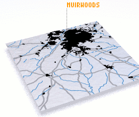 3d view of Muir Woods