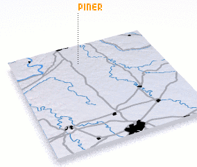 3d view of Piner