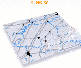 3d view of Surprise