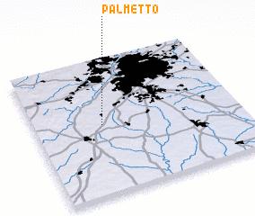 3d View Of Palmetto