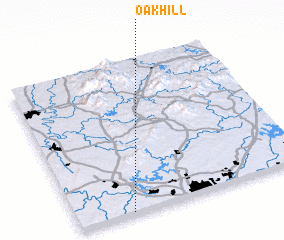 3d view of Oak Hill