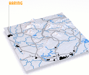 3d view of Waring