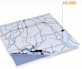 3d view of Selman