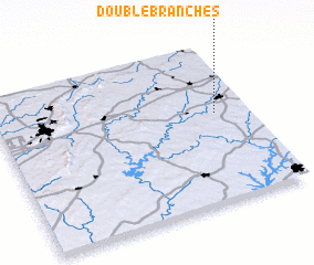 3d view of Double Branches