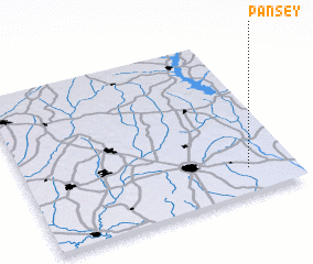 3d view of Pansey