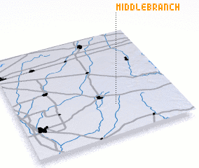 3d view of Middle Branch