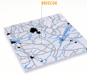 3d view of Briscoe