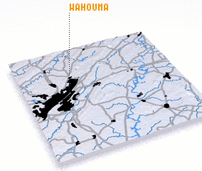 3d view of Wahouma
