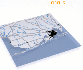 3d view of Fidelis
