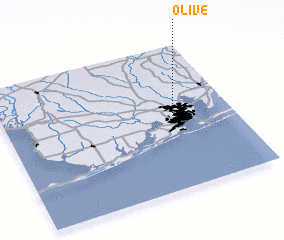 3d view of Olive