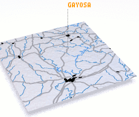 3d view of Gayosa