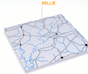 3d view of Nellie