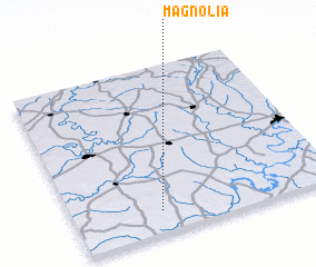 3d view of Magnolia