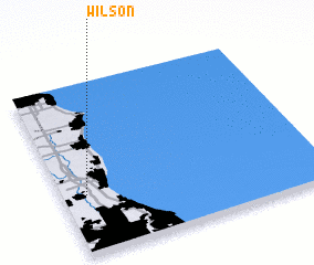 3d view of Wilson