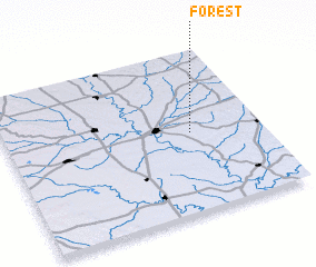 3d view of Forest