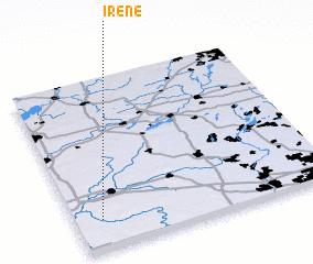 3d view of Irene