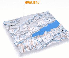 3d view of Gualibaj