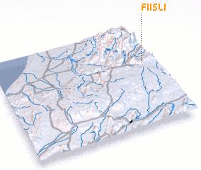 3d view of Fiisli