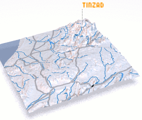 3d view of Tinzad