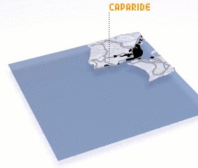 3d view of Caparide
