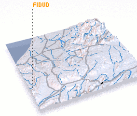 3d view of Fidud