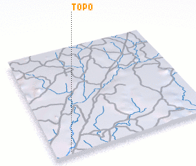 3d view of Topo