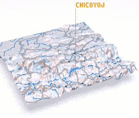 3d view of Chicoyoj