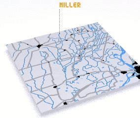 3d view of Miller