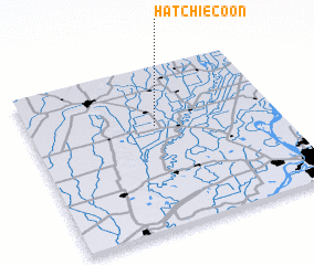 3d view of Hatchie Coon