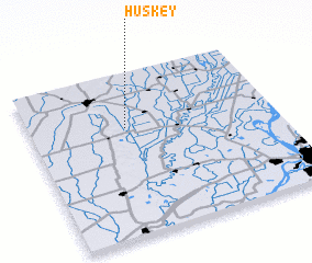 3d view of Huskey