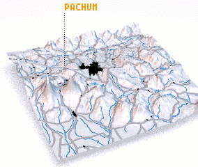 3d view of Pachum