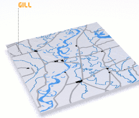 3d view of Gill
