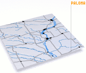 3d view of Paloma