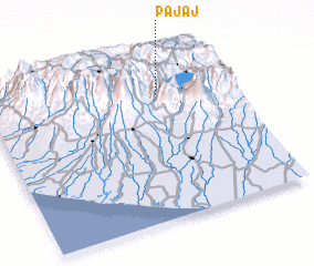 3d view of Pajaj