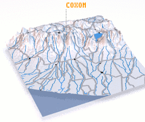 3d view of Coxom