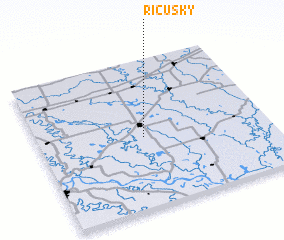 3d view of Ricusky