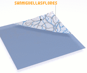 3d view of San Miguel Las Flores