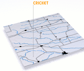 3d view of Cricket