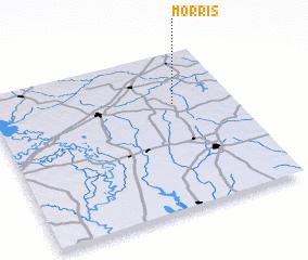 3d view of Morris