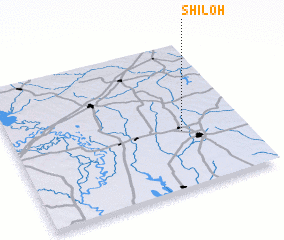 3d view of Shiloh