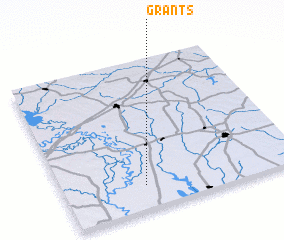3d view of Grants
